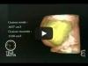 2- Imagerie médicale - Dr Panizza